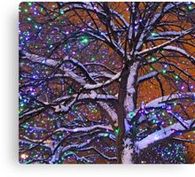 Tree with Lights - Ottawa Ontario Canvas Print