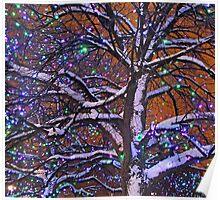 Tree with Lights - Ottawa Ontario Poster