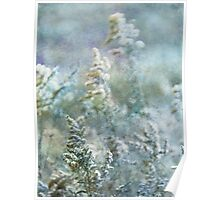 wild fall grasses 4 Poster