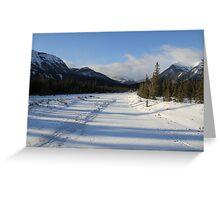 Snaring River , Jasper National Park  Greeting Card