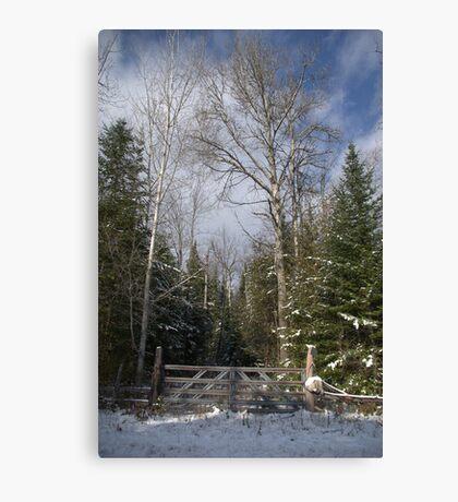 A Winter Scene........... Canvas Print