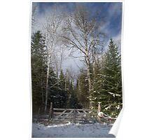 A Winter Scene........... Poster