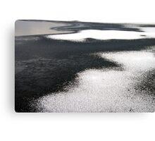 Winter Water Wonderland.......... Canvas Print