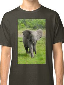 Young elephant charges at viewer  Classic T-Shirt