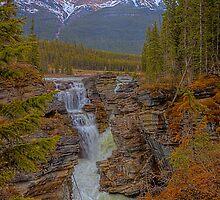 Athabasca Falls by JamesA1