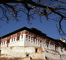 Rinchen Pung Dzong, Paro Bhutan  by LeighBlake