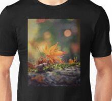 Autumnal beauty 1 Unisex T-Shirt