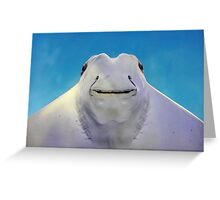 cownose ray Greeting Card