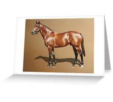 Elvestroem - Champion Thoroughbred Greeting Card