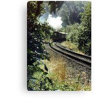 Single Track Canvas Print