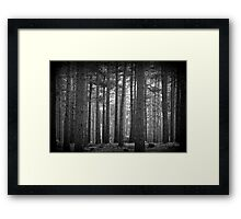 Troll Forest Framed Print