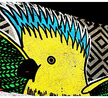 Galah - Graffiti - Street Art Photographic Print