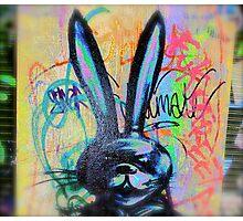 Angry Scary bunny Rabbit - Graffiti - Street Art Photographic Print