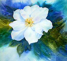 Camellia by Jacki Stokes