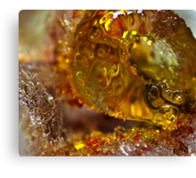 Bejeweled Ice Canvas Print