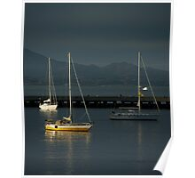 Sailboats on the Bay Poster