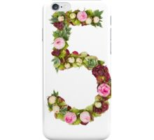 The number Five Part of a set of letters, Numbers and symbols iPhone Case/Skin