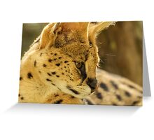 Sweet Serval Greeting Card