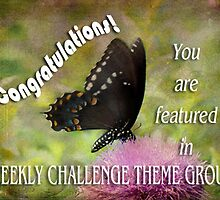 WEEKLY THEME CHALLENGE BANNER by vigor
