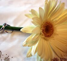 Wedding Rings on Flower by BrianFitePhoto