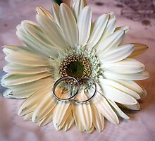 Wedding Rings on Flower by BrianFitePhoto