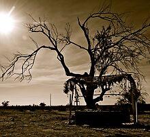 In the Desert, California USA black&white by Jessica Karran