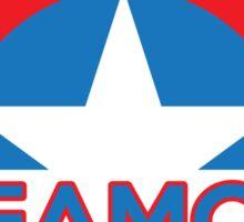 TeamCap Sticker
