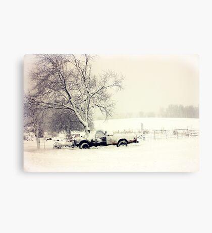 Snow Scene Metal Print