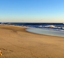 Cape Hatteras beach by Alberto  DeJesus