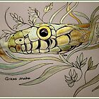Grass Snake by Gea Austen