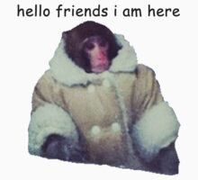 hello friends i am here: ikea monkey by catfantastic