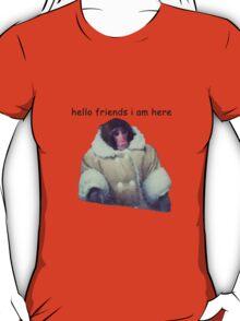 hello friends i am here: ikea monkey T-Shirt