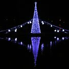 Christmas Lights in Torquay Harbour by lezvee