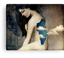 the longing for freedom Canvas Print