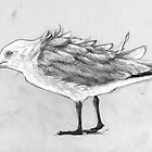 Seagull #2 by urbanmonk