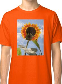 Backlit Sunflower and Bud Classic T-Shirt