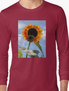 Backlit Sunflower and Bud Long Sleeve T-Shirt
