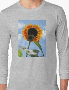 Backlit Sunflower and Bud Long Sleeve T-Shirt