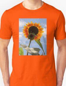 Backlit Sunflower and Bud T-Shirt