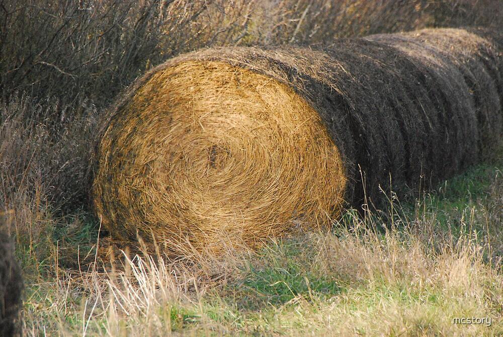 Hay Bale by Mary Carol Story