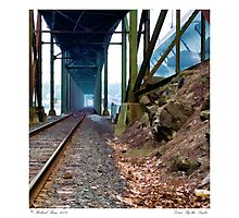 Down By the Tracks Photographic Print