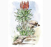 Aloe ferox in my garden Womens Fitted T-Shirt