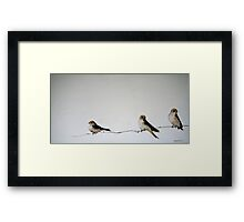 Songs of Experience Framed Print