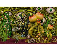 The Eyeball Garden Photographic Print