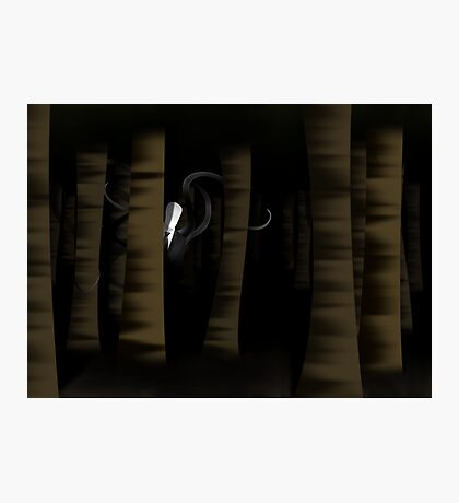 Slenderman in the Trees Photographic Print
