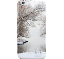 Winter Wonderland 01 iPhone Case/Skin