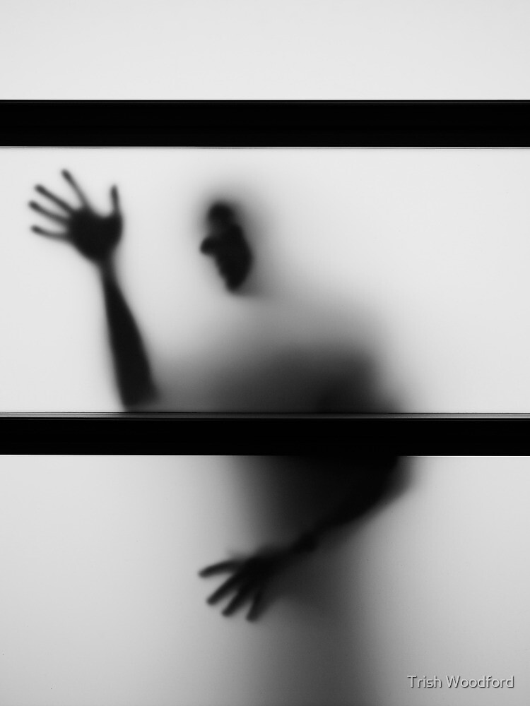Shadows I by Trish Woodford