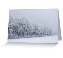 Frosted trees 2 Greeting Card