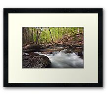 Spring's Magical Glow Framed Print