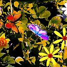Butterflies in a flower patch by  B. Randi Bailey